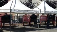 o-food-festival-ultimi-preparativi-in-vista-dell-apertura