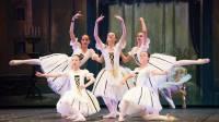 compagnia-della-danza-un-anno-di-successi-e-futuro-brillante