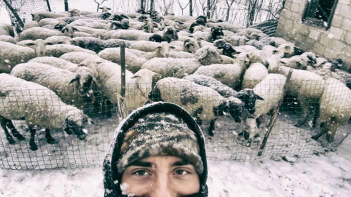 pastori e pecore bloccati da gelo e neve liberate le strade