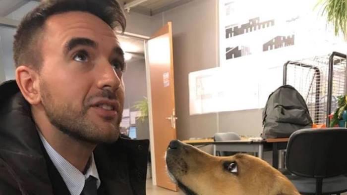 premio animalista dell anno 2018 a paolo bernini