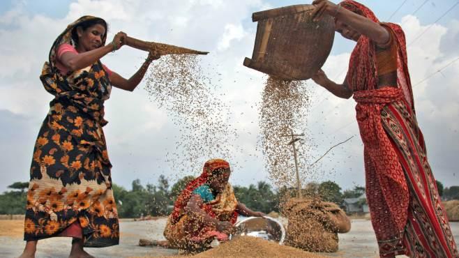 le donne rurali una realta sostenibile