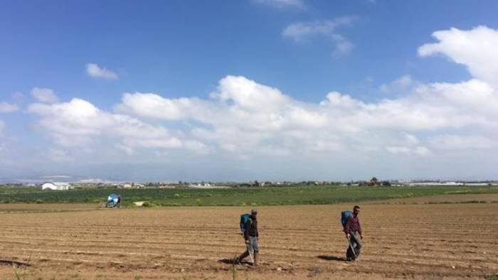Legge sul Caporalato, serve una riforma dei reati agroalimentari