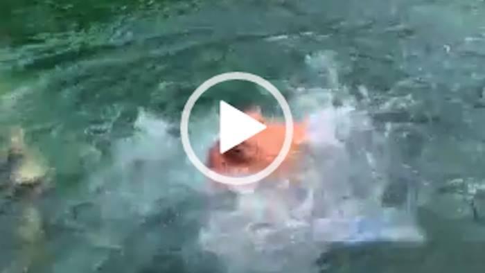 caserta si tuffa nella fontana della reggia e posta il video