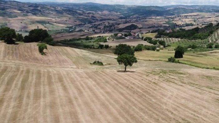 finanziato l overbooking del vecchio piano di sviluppo rurale