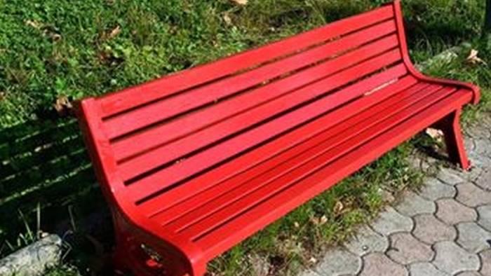 una panchina rossa per le donne sindaco ce l ha impedito