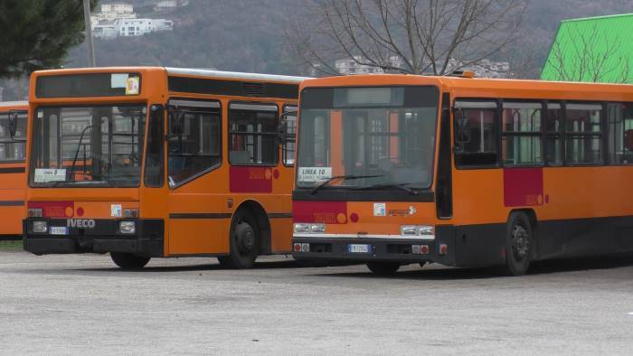 problemi trasporti la ricetta in 5 punti della trotta bus