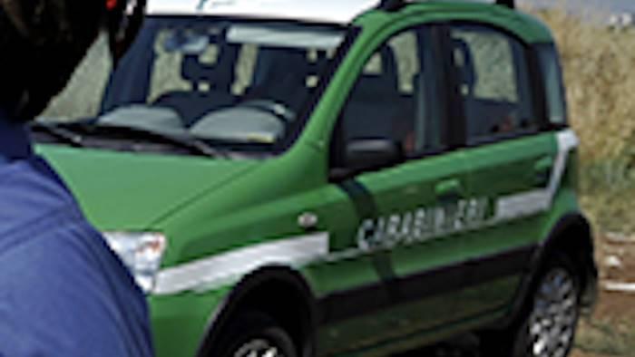 prodotti ortofrutticoli sequestrati dai carabinieri
