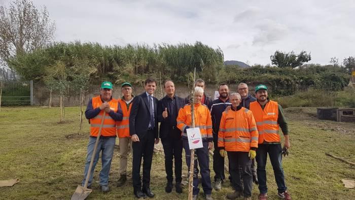 ercolano italia viva pianta 100 alberi