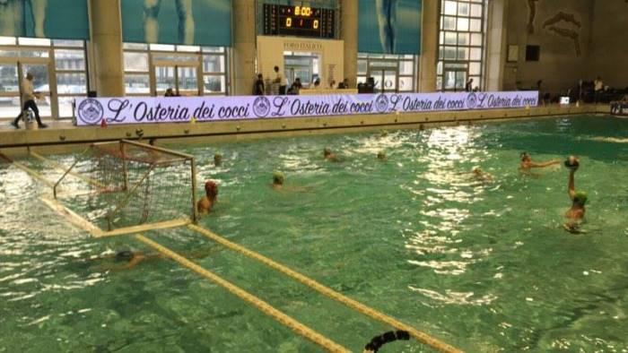 tgroup arechi sconfitta al foro italico contro la roma nuoto