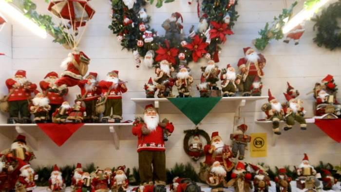 Immagini Del Villaggio Di Babbo Natale.A Santa Maria Del Plesco Il Villaggio Di Babbo Natale