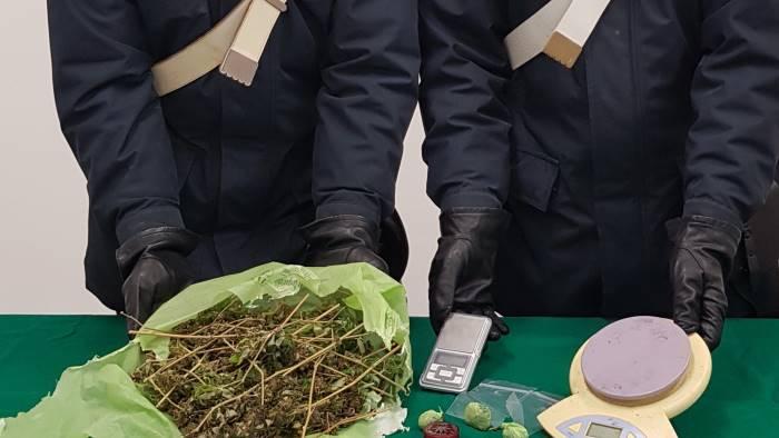 marijuana in casa arrestato ragazzo di 25 anni