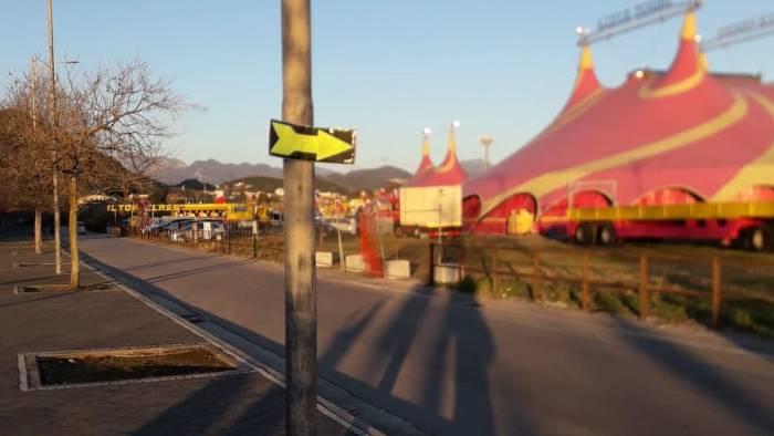 manifesti per il circo gli animalisti scrivono al sindaco