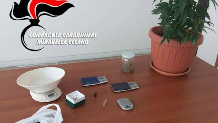 mirabella studente trovato in possesso di marijuana