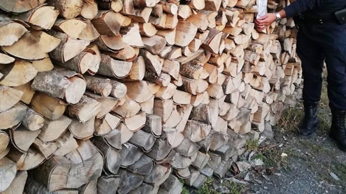 legna tagliata abusivamente sequestrati 100 quintali