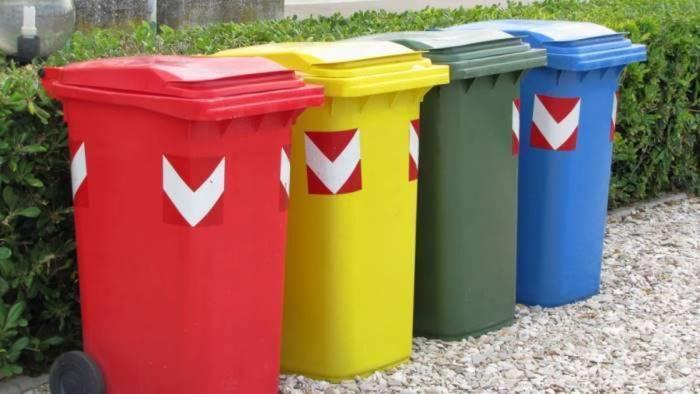 accudire gli animali e raccolta rifiuti per contagiati