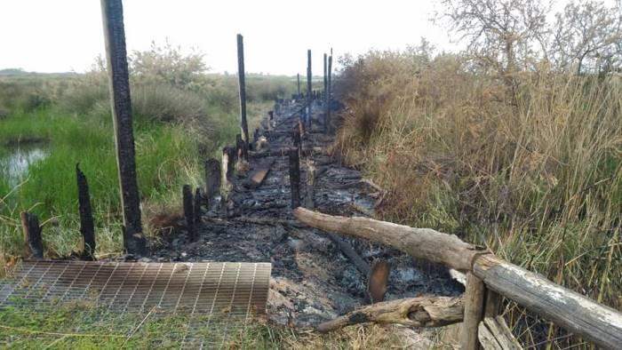 castel volturno in fiamme il capanno dell oasi protetta