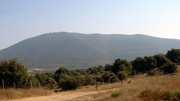 tragico incidente a un raduno religioso in israele 44 morti