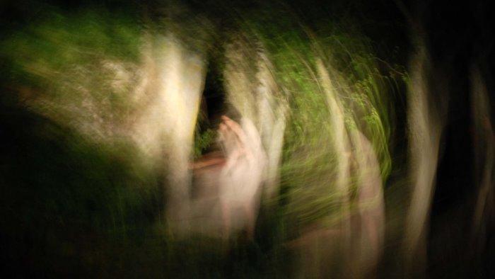 janua riparte e incontra l arte contemporanea di volpone