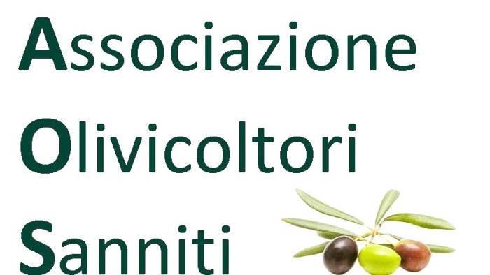 assemblea ordinaria dei soci associazione olivicoltori sanniti