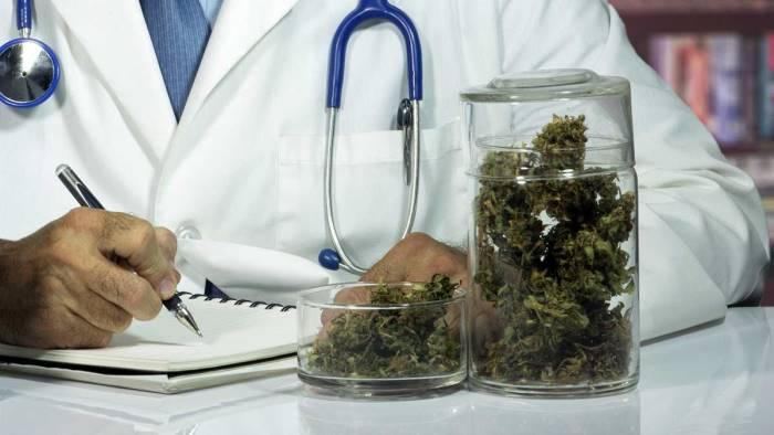 cannabis-terapeutica-la-legge-regionale-dimenticata
