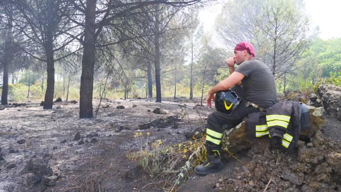vesuvio di nuovo in fiamme rogo rifiuti industriali nel parco