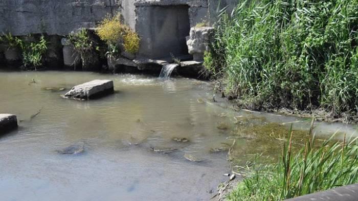 la foce del torrente savone e una bomba ecologica