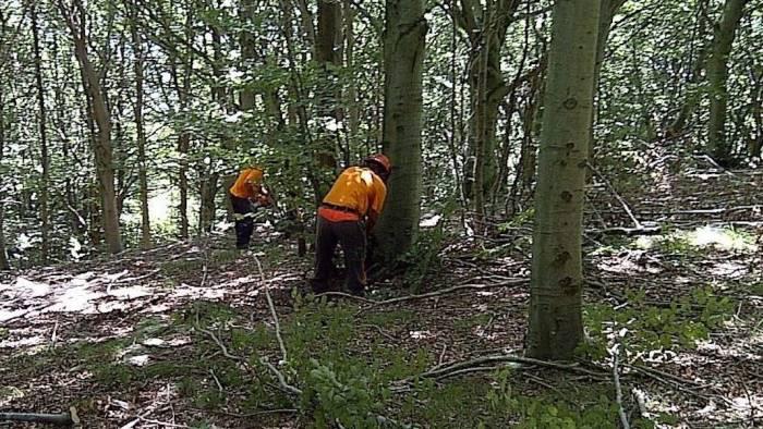 sciopero generale forestali si parte da salerno