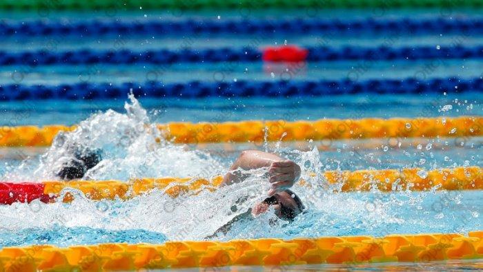 nuoto il 5 settembre l assemblea elettiva della fin