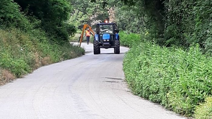 strade provinciali al via manutenzione del verde