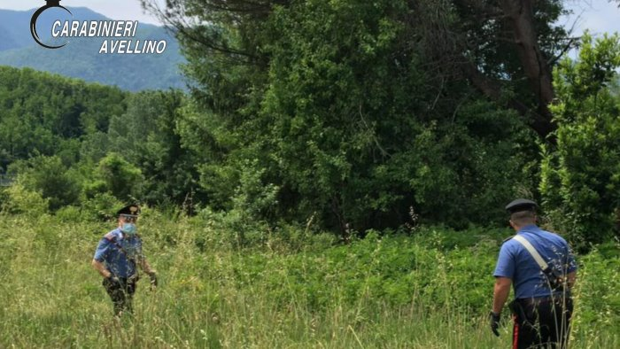 avvistata la pantera a summonte drone in volo sul partenio