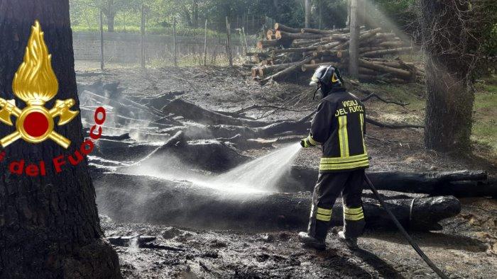 caldo record sterpaglie in fiamme in irpinia fumi sulla statale
