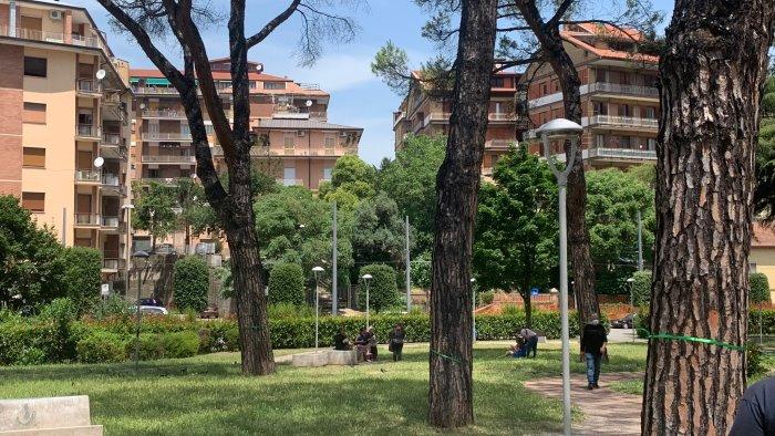 alberi malati al parco kennedy legambiente fare presto per salvarli