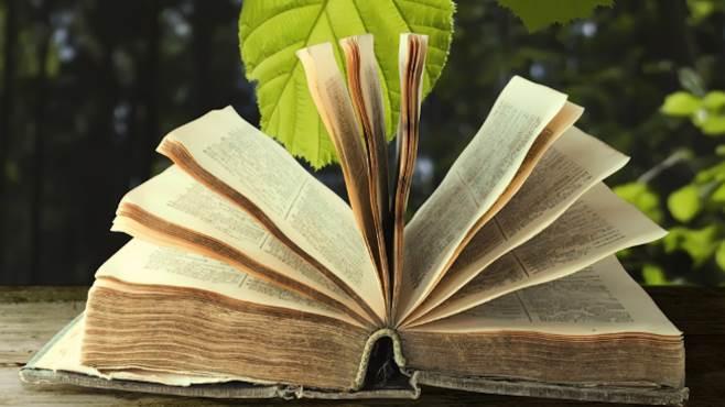 giardino letterario pronti al gran finale