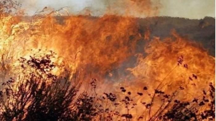 le nostre montagne bruciano e non possiamo fare niente