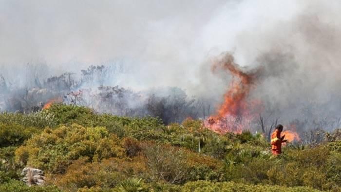 Incendi, Carabiniere fuori servizio arresta piromane romeno a Teggiano