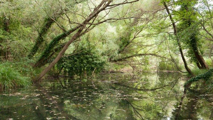 sele tanagro calore al via il contratto di fiume