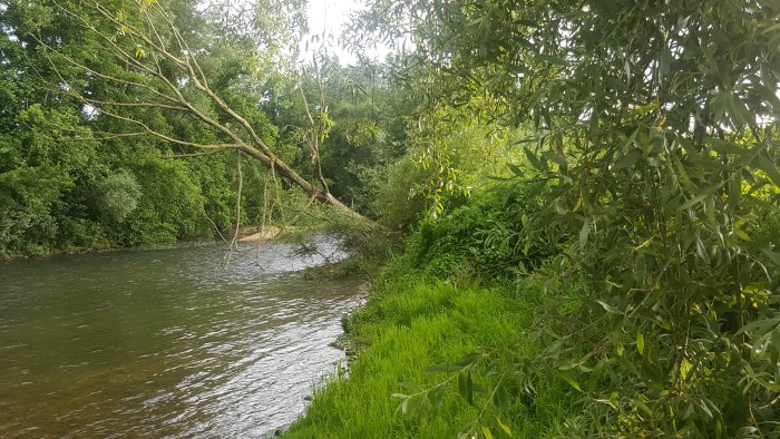 i fiumi rialzano i livelli idrometrici sotto la spinta dei temporali estivi
