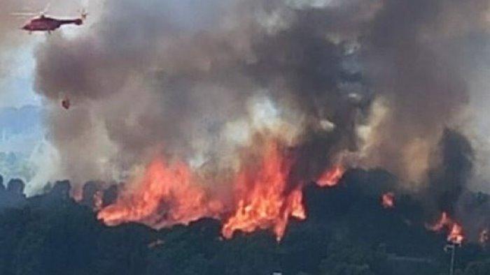 incendi sardegna solinas chiesto a draghi immediato sostegno economico