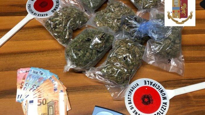 capaccio coltivava marijuana in una serra sul terrazzo arrestato 36enne