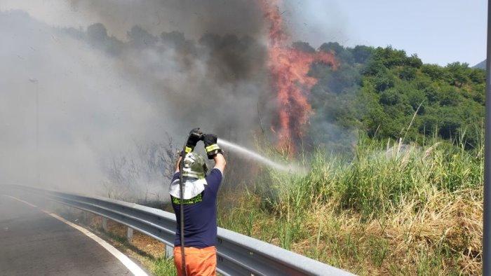 rogo a pellezzano volontari e vigili del fuoco evitano il peggio