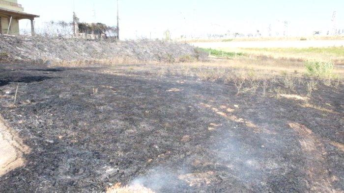 caldo torrido e terreni incolti incendi e paura per una famiglia foto