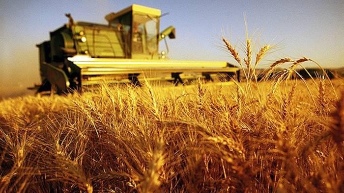 agricoltura arrivano oltre 900mila euro per la campania