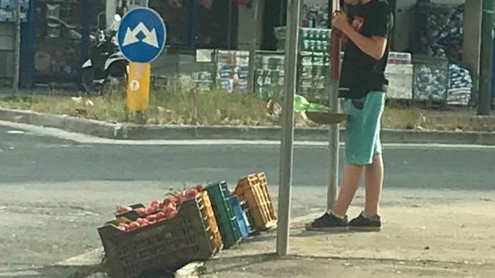 ciro 14 anni vende pomodori per tenersi lontano dalla malavita