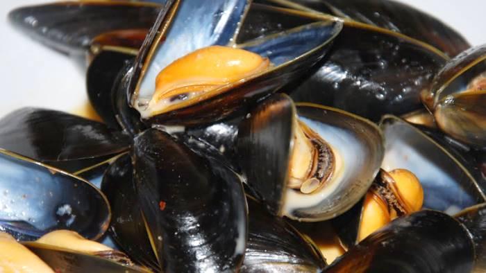 cena a base di frutti di mare muore turista in croazia