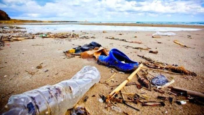 volontario pulisce ogni giorno spiaggia da rifiuti gratis