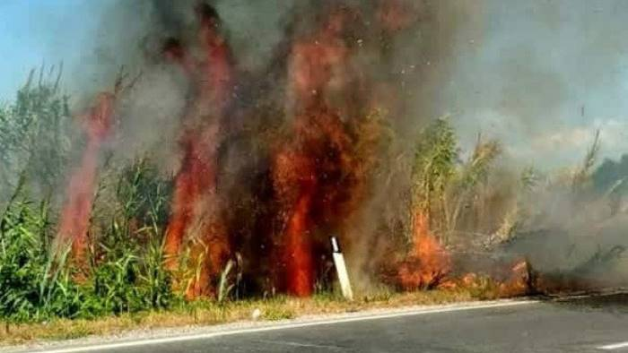 incendio sulla domitiana gente in strada per paura