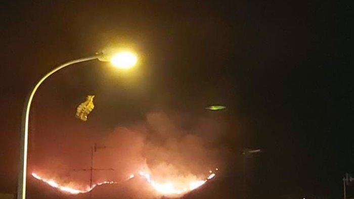 incendio sul monte tifata nel casertano borrelli danni ingenti e allarme