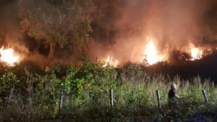 incendi al castello di arechi e giovi in azione i forestali