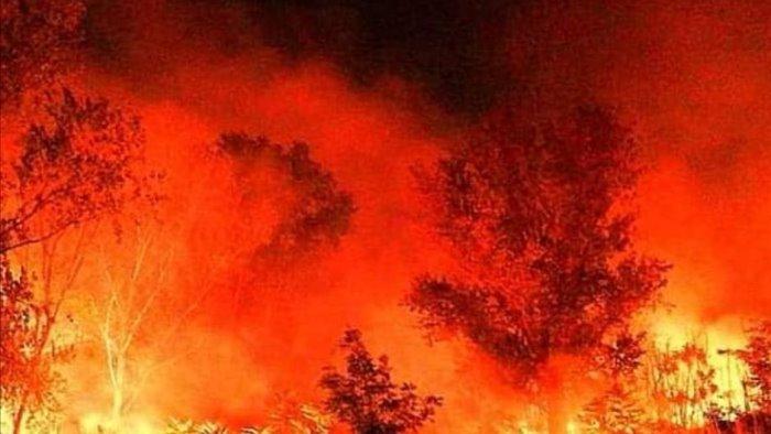 terra dei fuochi vasto incendio cittadini chiusi in casa